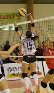 Caracuta 3 Pays D'Aix Venelles Volleyball
