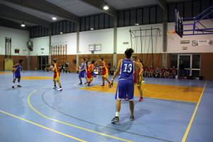 gavirate basket femminile 2