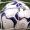 Il Comitato Regionale conferma lo stop e valuta la sospensione definitiva dei campionati