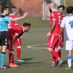 Pinerolo Varese (14)