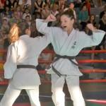 Ju Jitsu saggio 2017 10