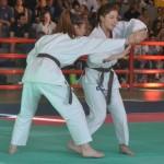 Ju Jitsu saggio 2017 13
