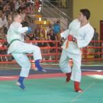 Ju Jitsu saggio 2017 14