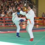 Ju Jitsu saggio 2017 16