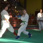 Ju Jitsu saggio 2017 18
