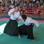 Ju Jitsu saggio 2017 2