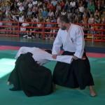 Ju Jitsu saggio 2017 3
