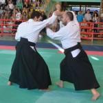 Ju Jitsu saggio 2017 4