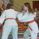 Ju Jitsu saggio 2017 5