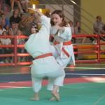 Ju Jitsu saggio 2017 6
