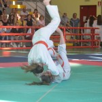 Ju Jitsu saggio 2017 9