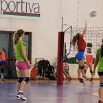 La Sportiva Gavirate Volley 2