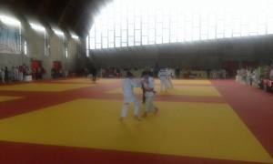 judo Gerenzano