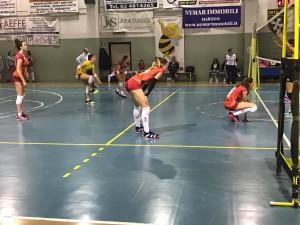 orago volley b2