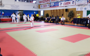 karate tatami Alessandra Bossi casalmaggiore