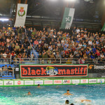 BPM Sport Management busto pallanuoto-pro recco 01