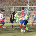 Busto 81-Accademia Pavese 07